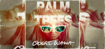 Oogee Wawa – Palm Trees #NewMusic