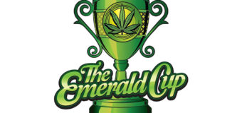 "14th Annual "" Emerald Cup"" coming December 9th & 10th, 2017"
