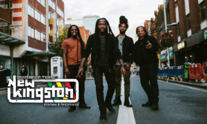 new kingston