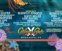 The 10th Annual California Roots Music & Artist Festivals Final Artist Announcement