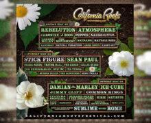 California Roots Final Artist Announcement